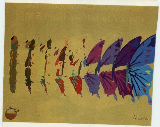 Butterfly School: Metamorphosis